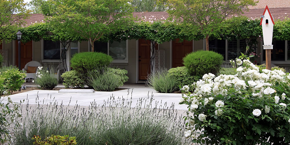 Solvang Lodging - Wine Country Retreat - Meadowlark Inn